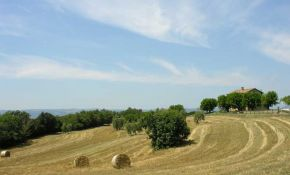Photo of stunning view of goldens fields around the property | italyrealproperty.com